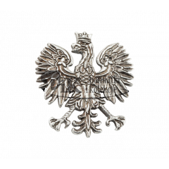 The modern eagle badge refers to the Polish emblem of 1990 - PINS