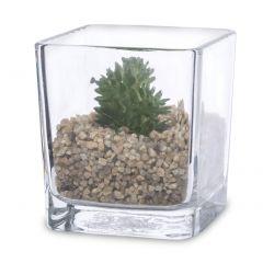 Roślina Ozdobna W Szkle 129477